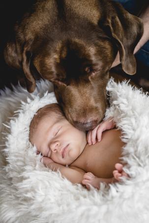Babyshooting with dog